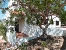 Casa Alfarrobeira (Villa)